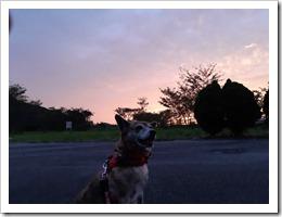 秋の夕日_200926_9